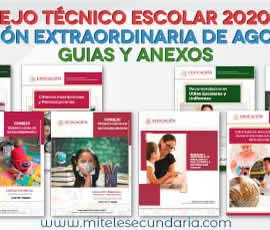 Guía para el CTE Sesión Extraordinaria de agosto Ciclo Escolar 2020-2021
