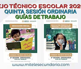 Guía para el CTE Quinta Sesión Ordinaria  Ciclo Escolar 2020-2021