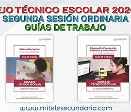 Guía para el CTE Segunda Sesión Ordinaria  Ciclo Escolar 2020-2021