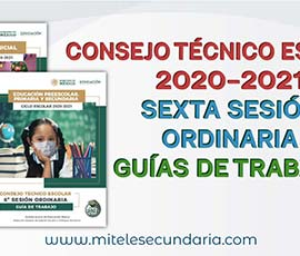 Guía para el CTE Sexta Sesión Ordinaria  Ciclo Escolar 2020-2021
