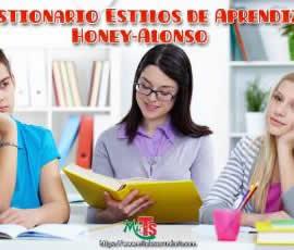 Cuestionario Estilos de Aprendizaje Honey-Alonso (CHAEA Junior)