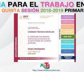 Ficha para el trabajo en CTE de Educación Primaria. Quinta sesión ordinaria 2018-2019