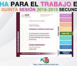 Ficha para el trabajo en CTE de Educación Secundaria. Quinta sesión ordinaria 2018-2019