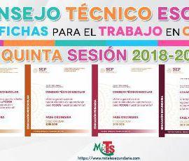 Fichas para el trabajo en CTE quinta sesión ordinaria-2018-2019
