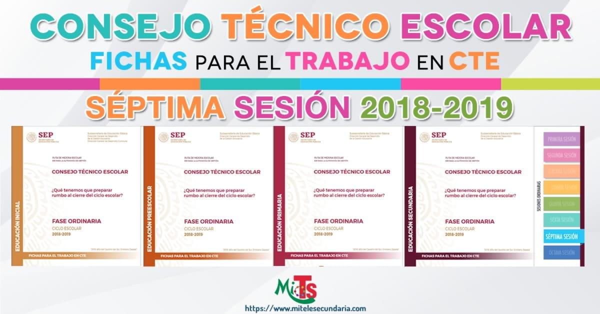 Fichas para el trabajo en CTE séptima sesión ordinaria-2018-2019