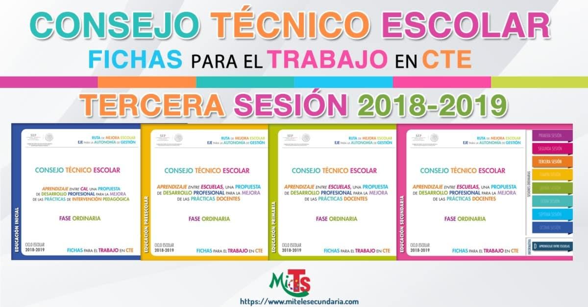 Fichas para el trabajo en CTE tercer sesión ordinaria-2018-2019